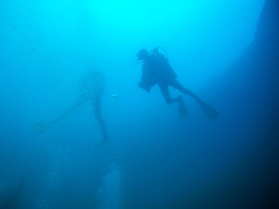 Bahama Divers: A View from below - visibility a little off, but still a great dive