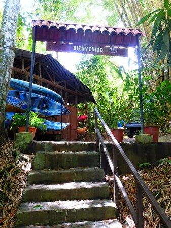 La Paloma Lodge: Dock greeting