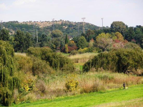 Jardines Botánicos de Johannesburgo y Presa Emmarentia: 1