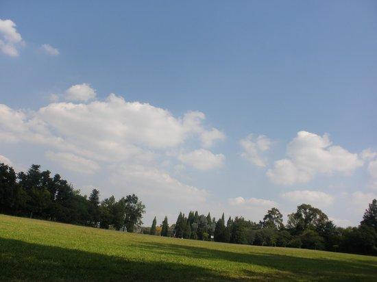 Jardines Botánicos de Johannesburgo y Presa Emmarentia: 2