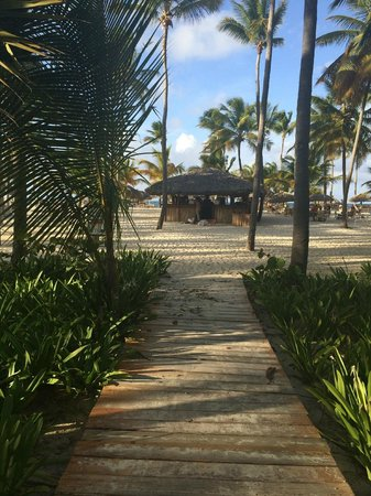 Catalonia Bavaro Beach, Casino & Golf Resort : Caminito hacia la playa