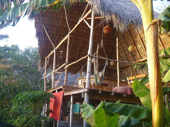 Hostel Clandestino: Clandestino Jungle Lounge