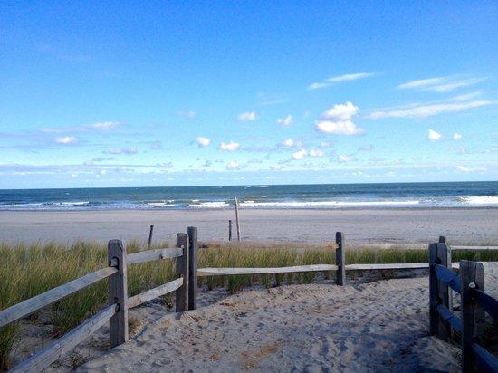Ventnor Beach Nj Restaurants