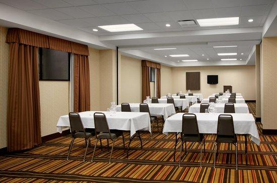 Hampton Inn Limerick-Philadelphia Area: Meeting room