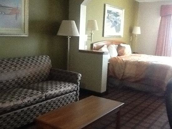 BEST WESTERN Inn & Suites - Midway Airport: plenty of bedspace