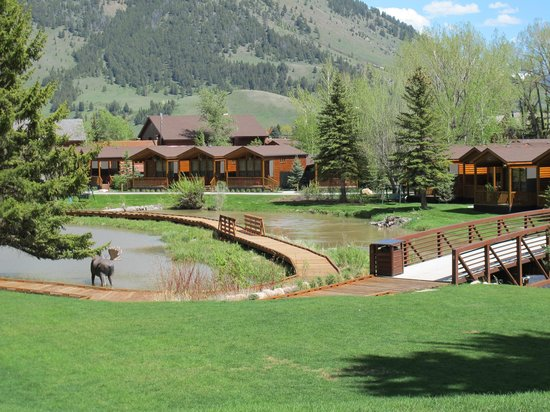 Rustic Inn Creekside Resort and Spa at Jackson Hole: Creekside cabins by the pond, creek and bridge walkways.