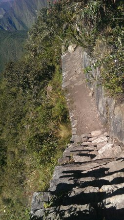 Lorenzo Expeditions: Day 4: Going down after climbing Machu Picchu mountain. Worth paying the extra 10 dollars for.