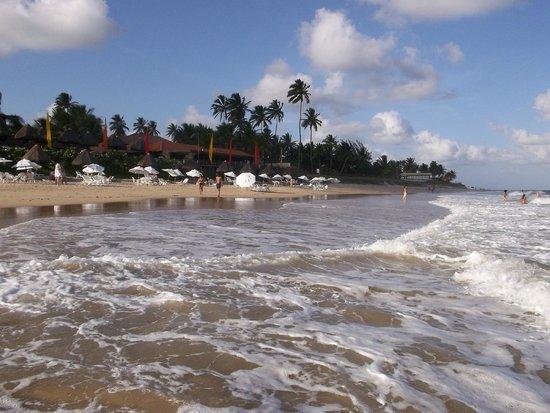 Pontal De Ocapora: desde dentro del mar
