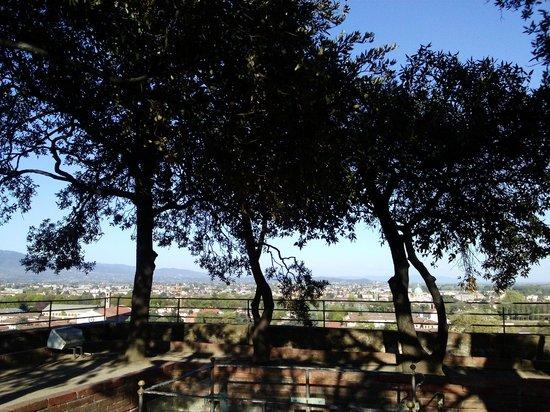 Guinigi Tower: il giardino pensile