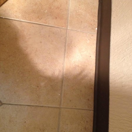 "Quality Inn and Suites North/Polaris: bathroom floor contained same dirt after ""special cleaning"""