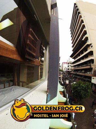 Golden Frog Hostel