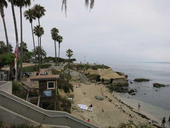 La Jolla Cove: 散歩が良いです