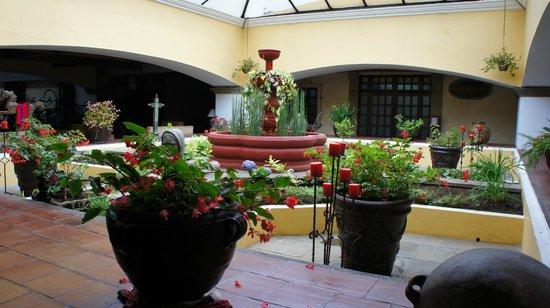 Soleil La Antigua: Garden