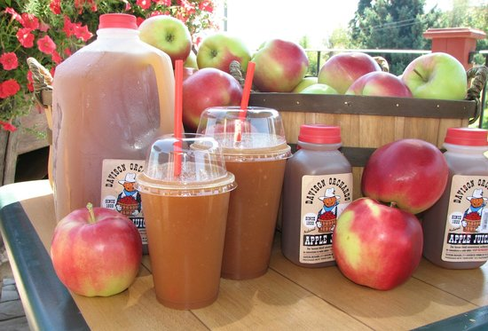 Vernon, Canada: Fresh pressed apple juice made right on our farm