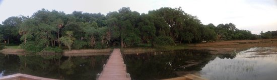Plantation Oaks Inn: View from our Dock