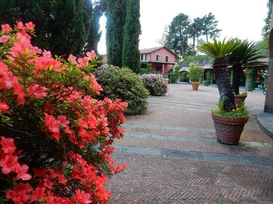Renaissance Tuscany Il Ciocco Resort & Spa: Peaceful setting