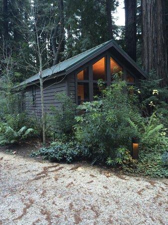 Glen Oaks Big Sur : Little Sur Cabin
