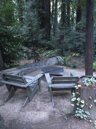 Glen Oaks Big Sur: Firepit outside the cabin