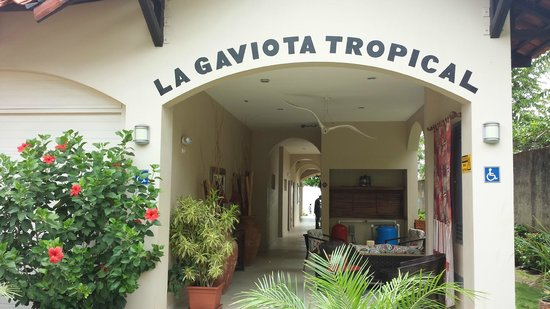 La Gaviota Tropical: Entrance