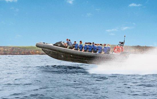 Manly Ocean Adventures: MOA