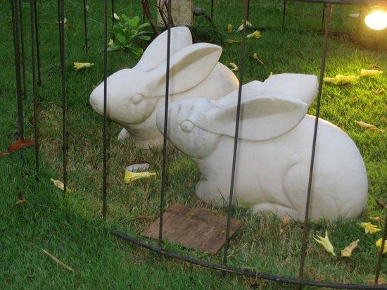 The White Rabbit : so romantic for couples