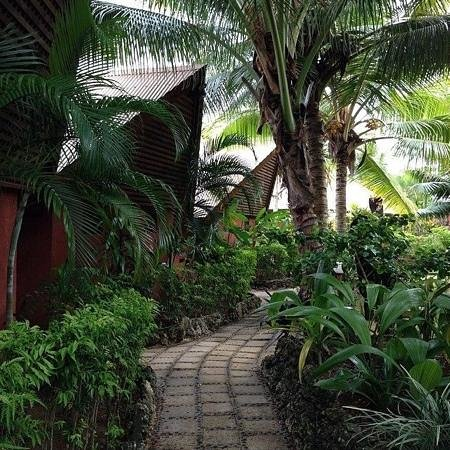 Sunset Bungalows Resort: Walkway to the Bunglows with Tropical Surroudings