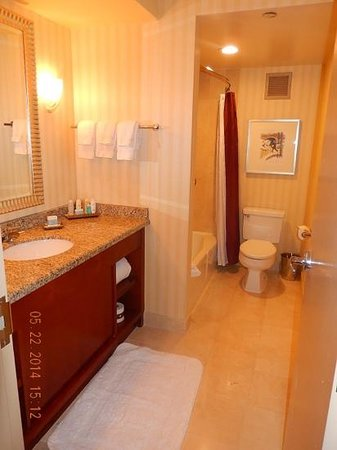 Omni Chicago Hotel: Bath room. thick towles and soft TP.