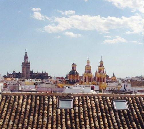 Hotel Palacio de Villapanes : View from the rooftop