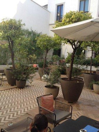 Hotel Palacio de Villapanes : Interior patio/courtyard
