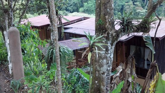 Rio Chirripo Lodge & Retreat: Rio Chir ripoff Retreat