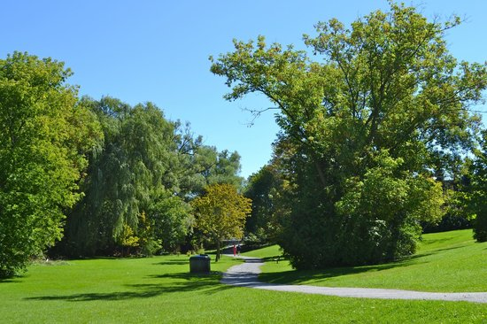 Toogood Pond Park : Walking path