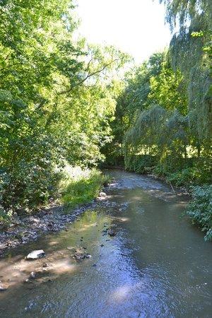 Toogood Pond Park : Flowing water
