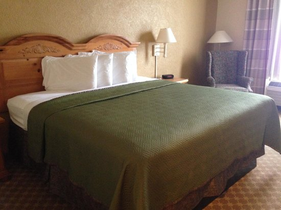 Travelodge Savannah Gateway: our room