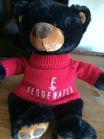The Edgewater, A Noble House Hotel: The Edgewater bear in the room