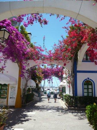 Hotel Puerto de Mogan THe Senses Collection: Smell the honeysuckle