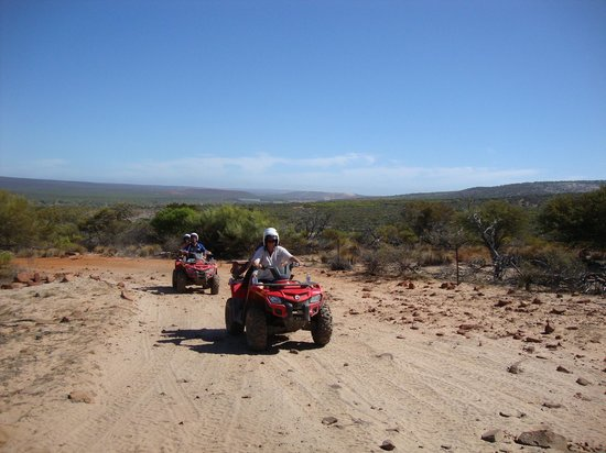 Kalbarri Quadbike Safaris: The view