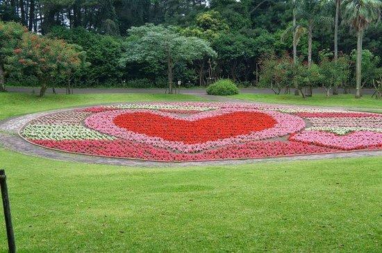 Flower Park Kagoshima: 花のハート
