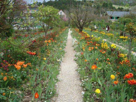 Claude Monet's House and Gardens: Lindo demais....