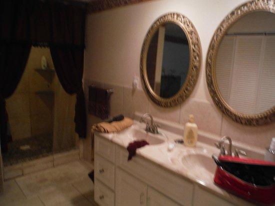 Rock Laurel Bed and Breakfast : The bathroom