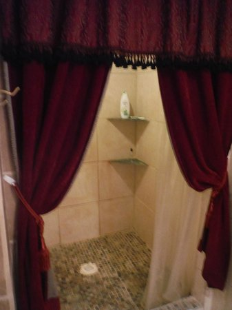 Rock Laurel Bed and Breakfast : Huge shower