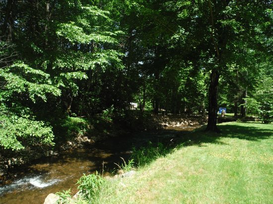 Rock Laurel Bed and Breakfast: Creek outside our room