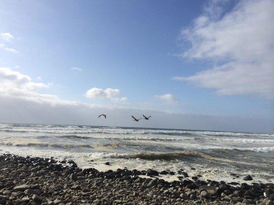Lanai at the Cove: View