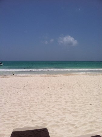 Secrets Maroma Beach Riviera Cancun: The BEACH - LOVED LOVED IT!!!