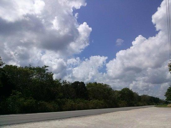 Quintana Roo National Park Campground & Hiking: Puedes apreciar la naturaleza en su máximo esplendor.