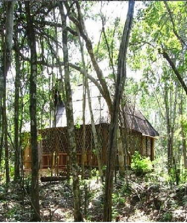 Quintana Roo National Park Campground & Hiking: Las cabañas son muy confortables