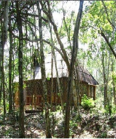 Quintana Roo National Park Campground & Hiking: Las cabañas son muy confortables