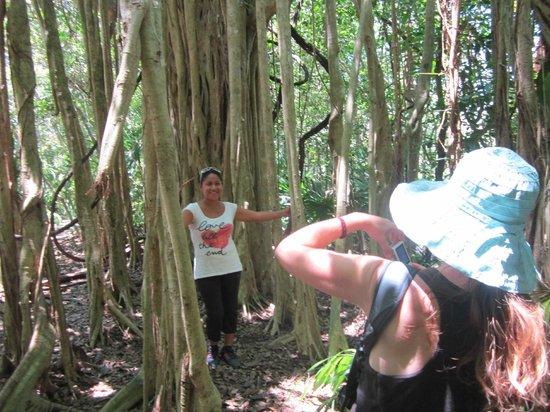 Quintana Roo National Park Campground & Hiking: Los paisajes del derredor son sorprendentes