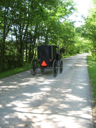Miller Haus Bed and Breakfast: Passing buggy.