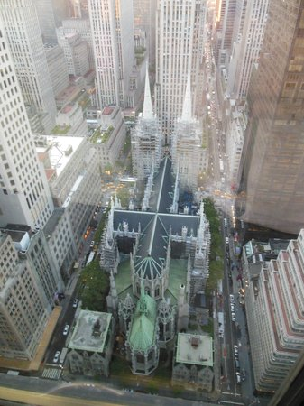 The Towers at Lotte New York Palace: Cathedral