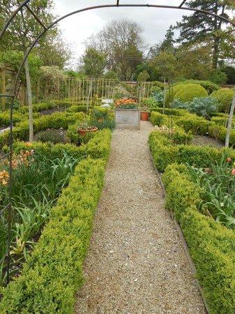 Heale Gardens: Plantings